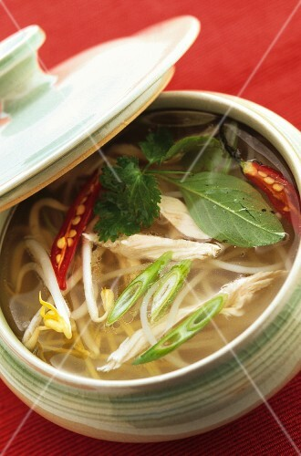 Chicken soup with noodles (Asia)
