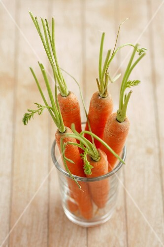 Fresh carrots in a glass