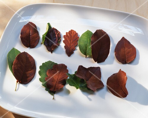Assorted chocolate leaves