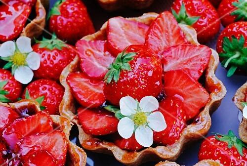 strawberry fruit tart with strawberry flower