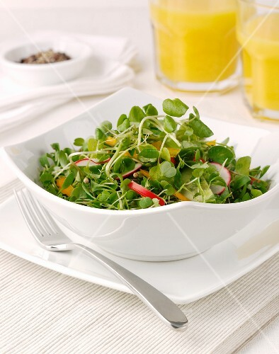 Sprout salad with radishes