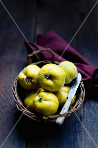 Several quinces in a basket with a knife
