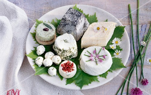 Assorted varieties of soft French cheese on a plate