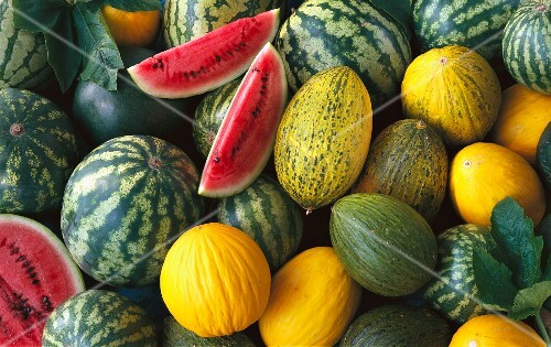 Assorted types of melon (filling the image)