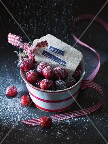 Cranberries with icing sugar in a pot (Christmassy)