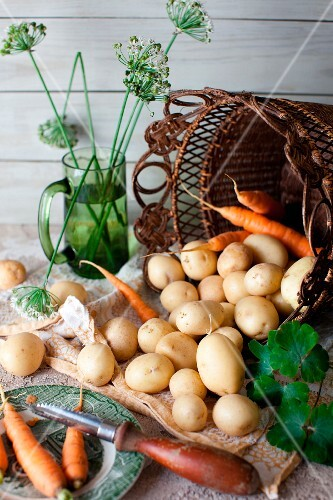 Fresh Potatoes and Carrots Spilling From a Basket; Peeler