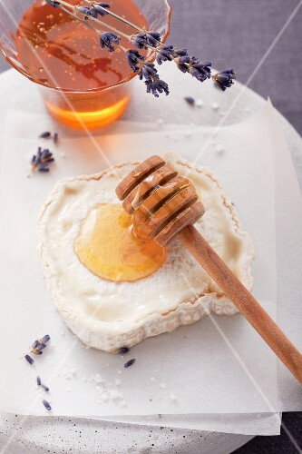 Goat's cheese with honey and lavender flowers