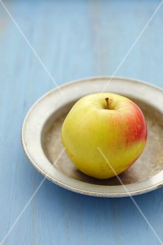 An apple on a plate