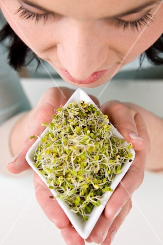 A woman holding a bowl of radish sprouts (view from above)