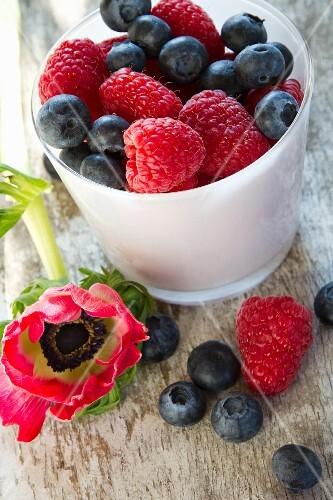 Fresh berries in a mug