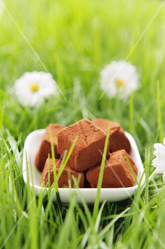 Chocolate truffles in artificial grass
