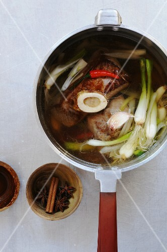 Soup with spring onions and beef (Vietnam)