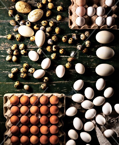 Assorted eggs on a wooden board