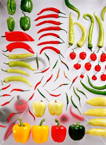 Different types of peppers and chillies