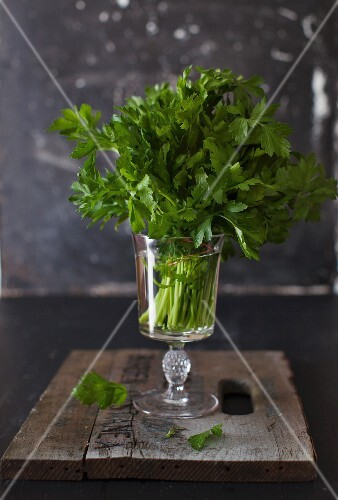 A bunch of parsley in a glass