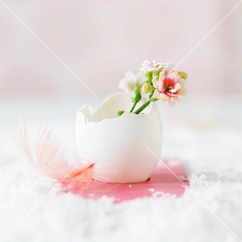 Easter arrangement of spring flowers in egg shell
