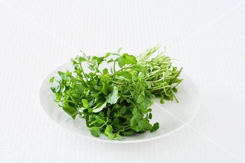 Fresh watercress on a plate against a white background