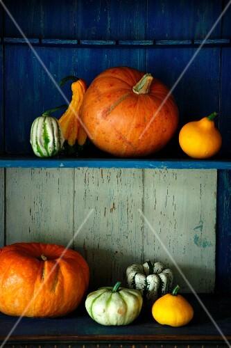 An arrangement of pumpkins