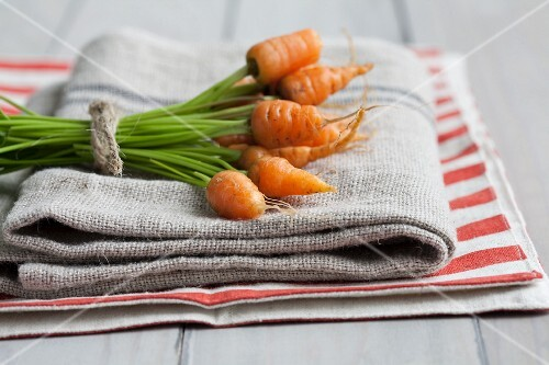 A bunch of baby carrots on a tea towel