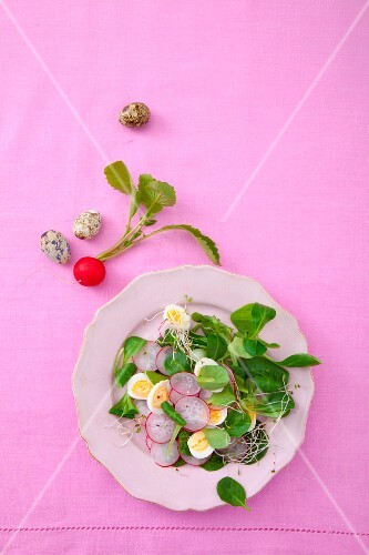Lamb's lettuce with quail's eggs, radishes and sprouts
