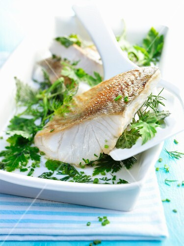 Zander fillet on a bed of herbs