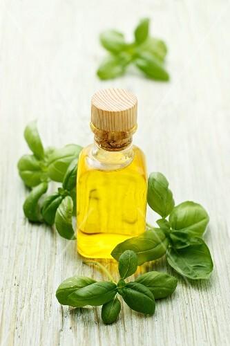 Fresh basil and olive oil