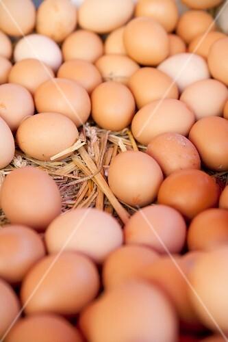 Fresh organic eggs on straw