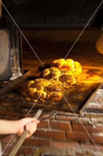 Freshly baked bread rolls on a baking tray in a wood-fired oven