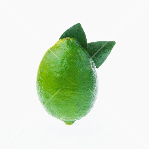 A lime