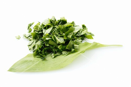 A wild garlic leaf and wild garlic