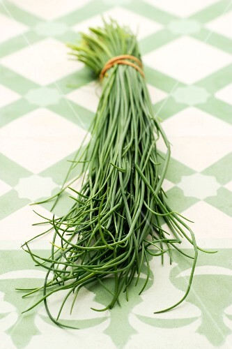 A bunch of chives on a tiled surface