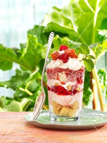 Rhubarb trifle with raspberries