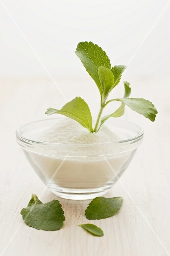 A stevia plant and powder