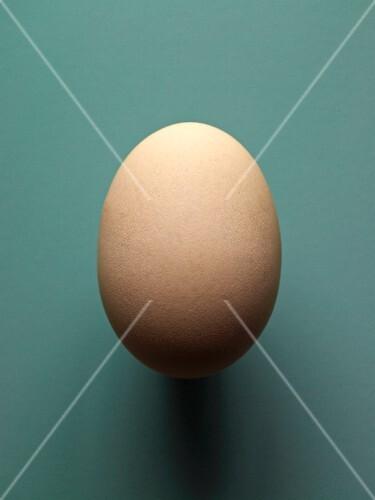 A brown hen's egg, size XXL