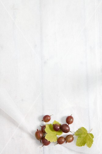 Gooseberries and leaves on baking parchment