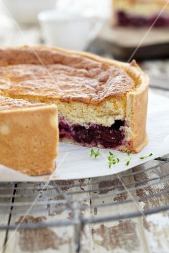 Baked blackberry & cream cake, sliced open