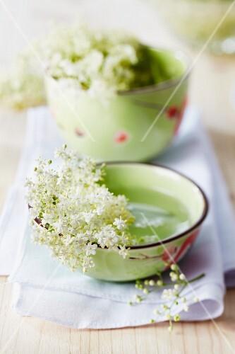 Elderflowers in bowls of water