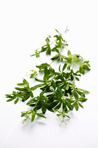 Woodruff sprigs on a white surface