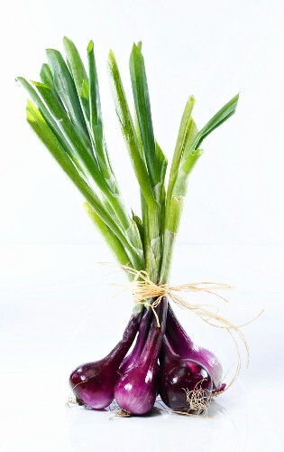 A bunch of red spring onions
