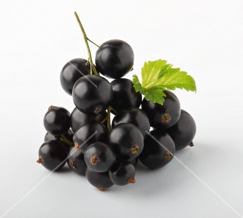 A bunch of blackcurrants
