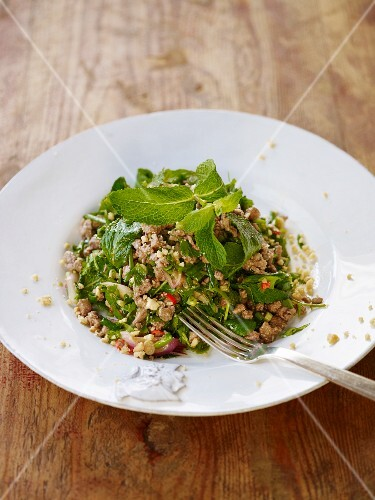 Salad with minced duck, onions and mint