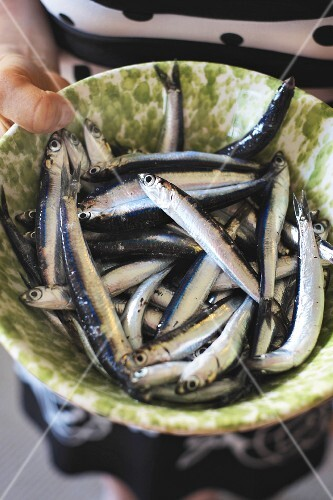 Fresh anchovies in a bowl