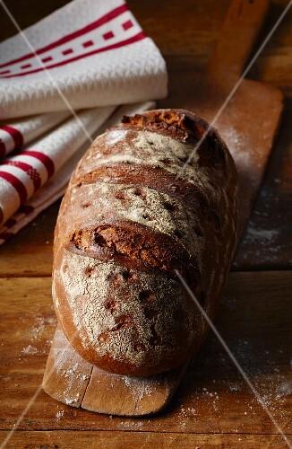 Farmhouse bread on a bread peel