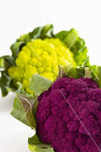 Purple and green cauliflower
