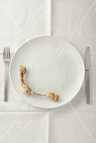 Chicken bones on a white plate