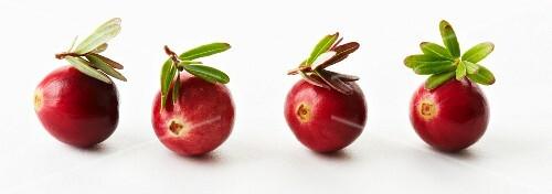 Four cranberries