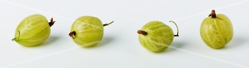 Four gooseberries in a row