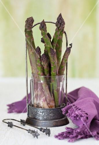 Asparagus with a Purple Cloth