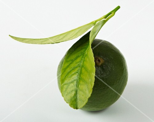 A lime with lime leaves