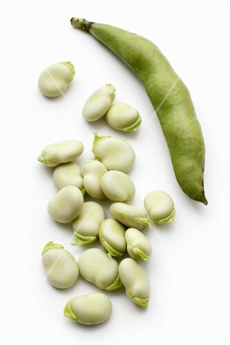 Broad beans and a bean pod